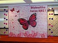Pink Butterfly Birthday theme Backdrop