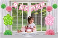 Girl 1st Birthday Cake Smash Photo Shoot kit (Pack of 17 pieces)