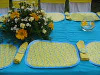 Pink & Blue Babyshower theme Placemats