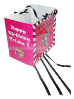 Teenager Birthday theme Pinata