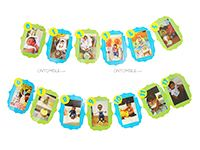 Teddy Theme Birthday Photo Bunting