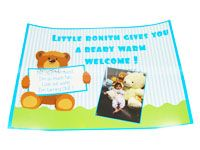 Teddy Theme Birthday Posters / Cutouts
