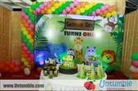 Kirthika Chandran : Thanq so much for the jungle themed props for my son birthday...