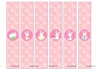 Wristbands - Bunny Theme Birthday Party Supplies