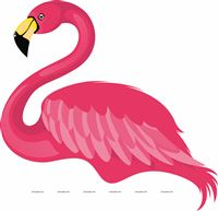 Beautiful Flamingo Poster