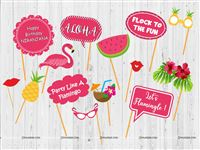 Flamingo Theme Party Photo Props (14 pieces)
