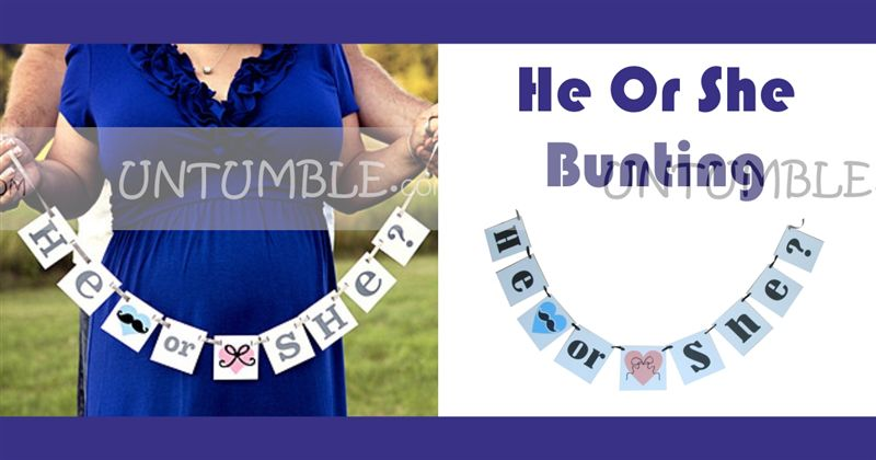 He or She Bunting