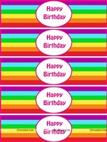 Rainbow Birthday theme Wristbands
